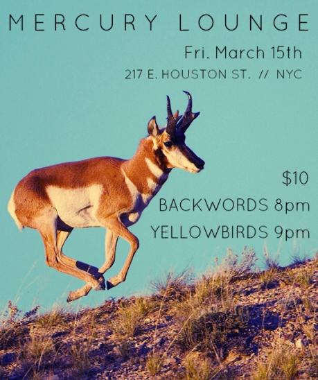 Yellowbirds March 15